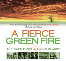 fierce-green-fire